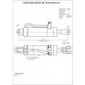Гидроцилиндр ЦГ-80.40х200.01-01